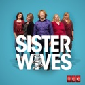 Sister Wives, Season 6 cast, spoilers, episodes, reviews