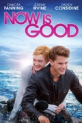 Now is Good summary, synopsis, reviews