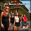 Pit Bulls and Parolees, Season 4 watch, hd download