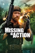 Missing In Action release date, synopsis, reviews