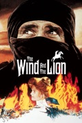 The Wind and the Lion summary, synopsis, reviews