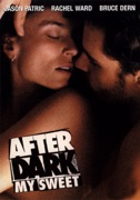 After Dark My Sweet summary, synopsis, reviews