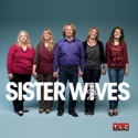 Sister Wives, Season 4 cast, spoilers, episodes, reviews
