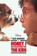 Honey, I Shrunk the Kids release date, synopsis, reviews