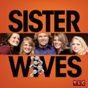 Sister Wives, Season 2 cast, spoilers, episodes, reviews
