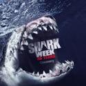 Shark Fight - Shark Week from Shark Week, 2012