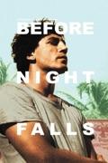 Before Night Falls summary, synopsis, reviews