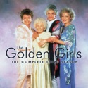 The Golden Girls, Season 3 reviews, watch and download