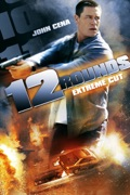 12 Rounds (Extreme Cut) [Unrated] summary, synopsis, reviews