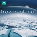 To The Ends of the Earth, Pt. 1 - Frozen Planet from Frozen Planet