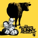 It's Always Sunny in Philadelphia, Season 4 reviews, watch and download