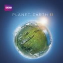 Planet Earth II reviews, watch and download