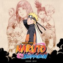 Hidden Leaf Story, The Perfect Day for a Wedding, Pt. 6: The Outcome of the Secret Mission - Naruto Shippuden Uncut from Naruto Shippuden Uncut, Season 8, Vol. 7