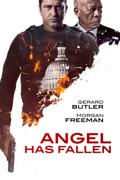 Angel Has Fallen summary, synopsis, reviews