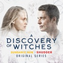 A Discovery of Witches, Season 1 reviews, watch and download