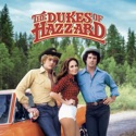 The Dukes of Hazzard, Season 1 reviews, watch and download