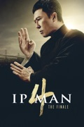 Ip Man 4: The Finale summary, synopsis, reviews