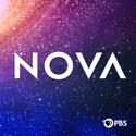 NOVA, Vol. 24 reviews, watch and download