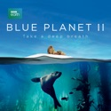 The Deep - Blue Planet II from Blue Planet II