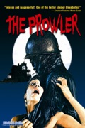 The Prowler summary, synopsis, reviews