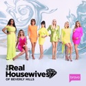 The Real Housewives of Beverly Hills, Season 10 reviews, watch and download