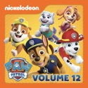 PAW Patrol, Vol. 12 reviews, watch and download