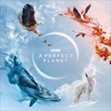 A Perfect Planet reviews, watch and download