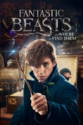 Fantastic Beasts and Where to Find Them summary, synopsis, reviews