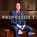 Anatomy of a Memory - Professor T from Professor T, Season 1