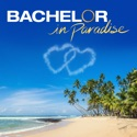 Bachelor in Paradise, Season 7 release date, synopsis and reviews