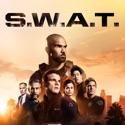 27 David - S.W.A.T. from S.W.A.T., Season 5