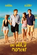 One Wild Moment summary, synopsis, reviews