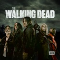 The Walking Dead, Season 11 release date, synopsis and reviews