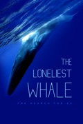 The Loneliest Whale: The Search for 52 reviews, watch and download