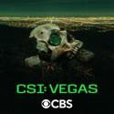 Under the Skin - CSI: Vegas from CSI: Vegas, Season 1