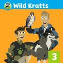 Cheetah Racer - Wild Kratts from Wild Kratts, Vol. 3