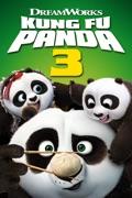 Kung Fu Panda 3 reviews, watch and download