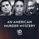 An American Murder Mystery, Volume 1 reviews, watch and download