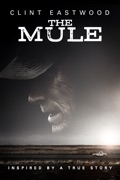 The Mule (2018) summary, synopsis, reviews