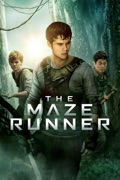The Maze Runner reviews, watch and download