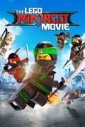 The LEGO Ninjago Movie summary, synopsis, reviews