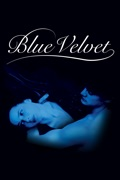 Blue Velvet summary, synopsis, reviews