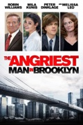 The Angriest Man in Brooklyn summary, synopsis, reviews