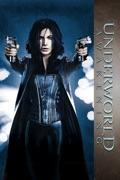 Underworld Awakening summary, synopsis, reviews