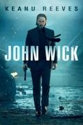 John Wick summary, synopsis, reviews