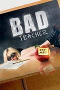 Bad Teacher summary, synopsis, reviews