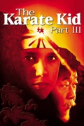 The Karate Kid: Part III summary, synopsis, reviews