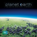 Planet Earth, Series 1 reviews, watch and download