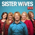 Sister Wives, Season 7 cast, spoilers, episodes, reviews