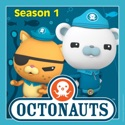 The Undersea Storm / The Giant Squid - Octonauts from The Octonauts, Season 1
